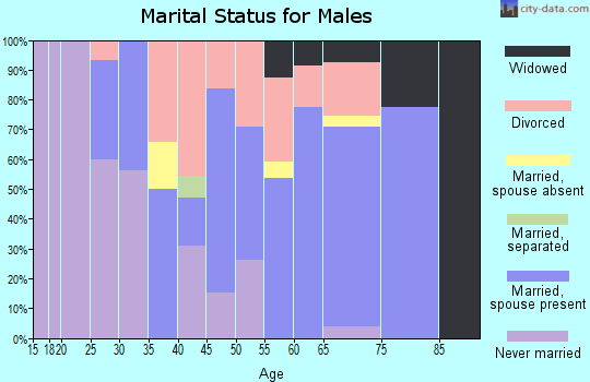 Zip code 28643 marital status for males