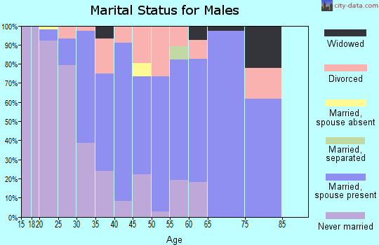 Zip code 28651 marital status for males