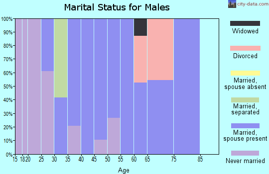Zip code 28660 marital status for males