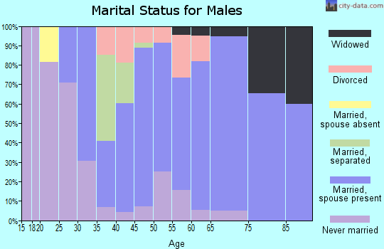 Zip code 28673 marital status for males