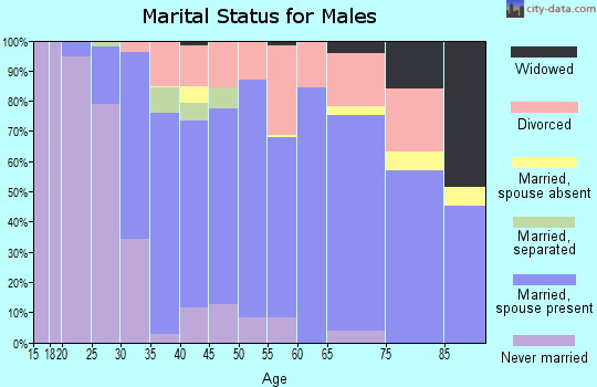 Zip code 28732 marital status for males