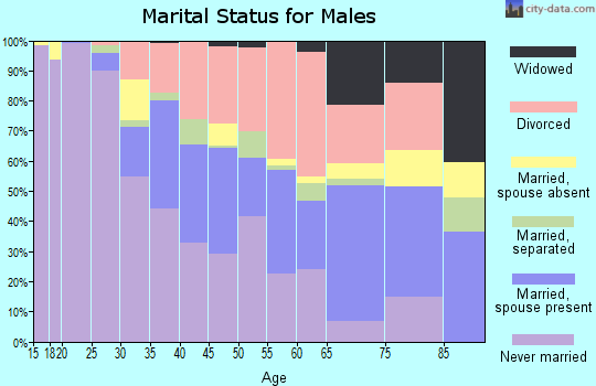 Zip code 28801 marital status for males