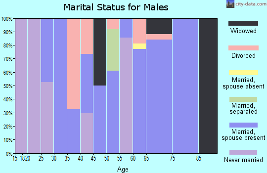 Zip code 29145 marital status for males