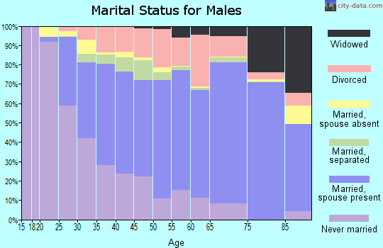 Zip code 29209 marital status for males