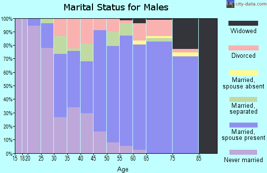 Zip code 29356 marital status for males