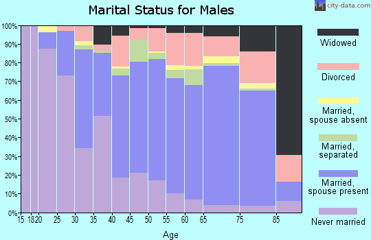 Zip code 29379 marital status for males