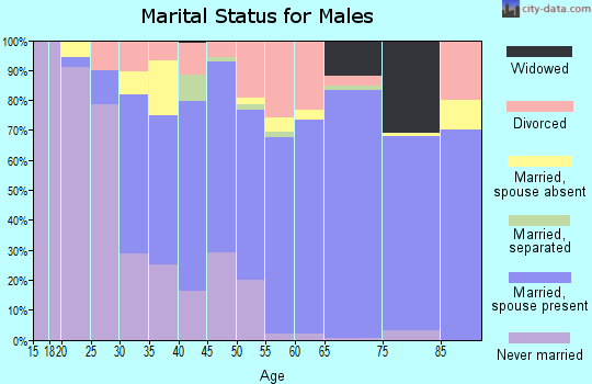 Zip code 29455 marital status for males