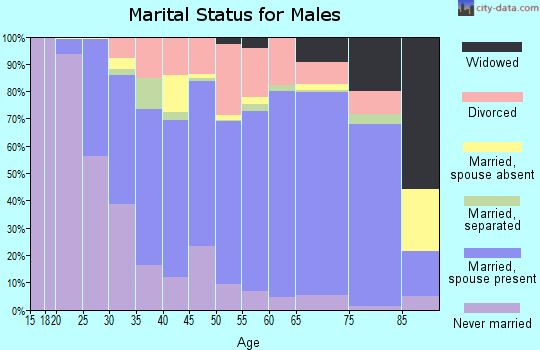 Zip code 29461 marital status for males