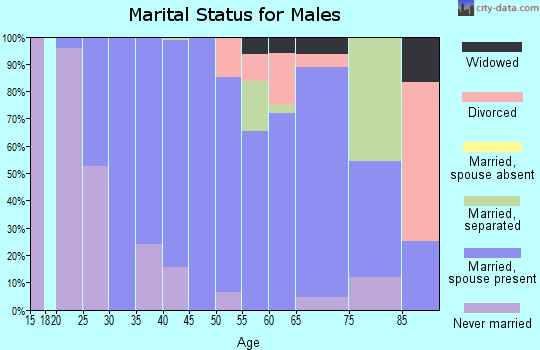 Zip code 29492 marital status for males