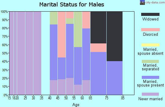 Zip code 29516 marital status for males