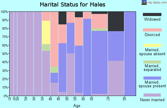 Zip code 29525 marital status for males