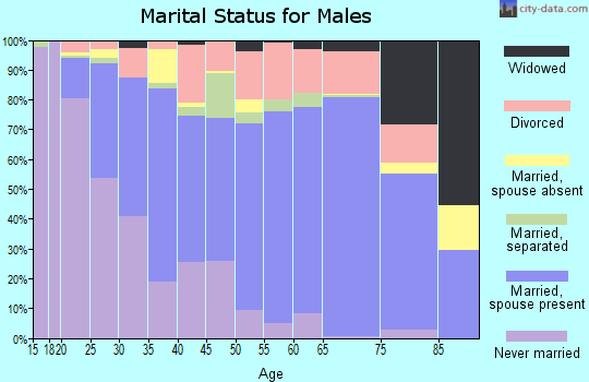 Zip code 29527 marital status for males