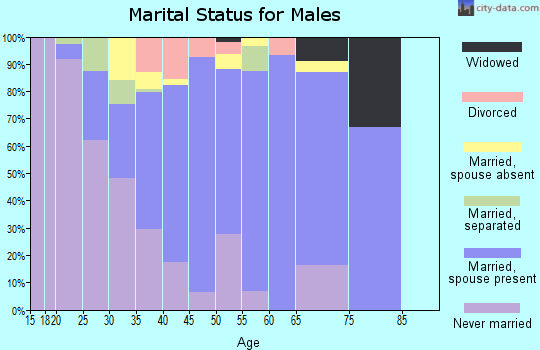 Zip code 29541 marital status for males
