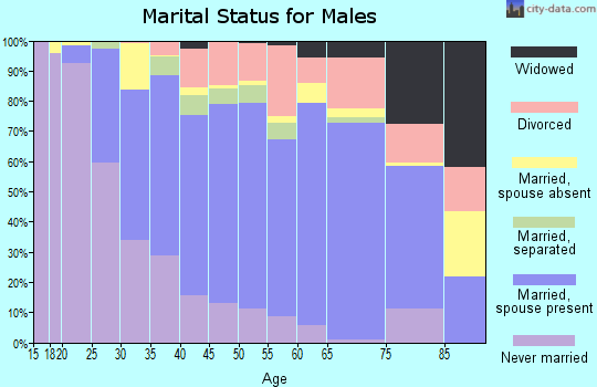 Zip code 29550 marital status for males
