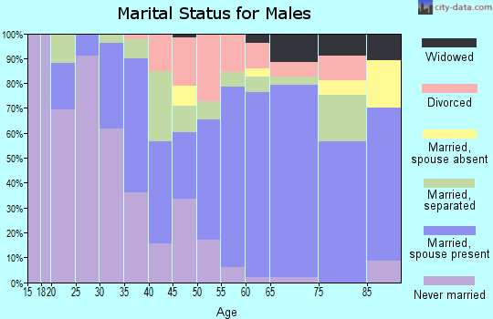 Zip code 29574 marital status for males