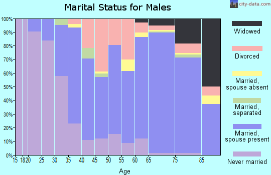 Zip code 29576 marital status for males