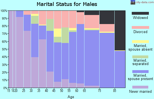 Zip code 29582 marital status for males