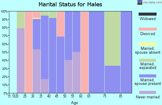 Zip code 29592 marital status for males
