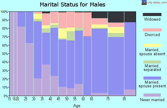 Zip code 29617 marital status for males
