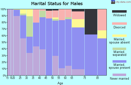 Zip code 29620 marital status for males