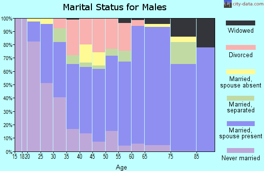 Zip code 29626 marital status for males