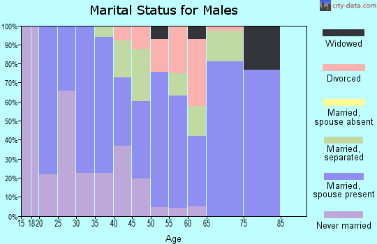 Zip code 29661 marital status for males