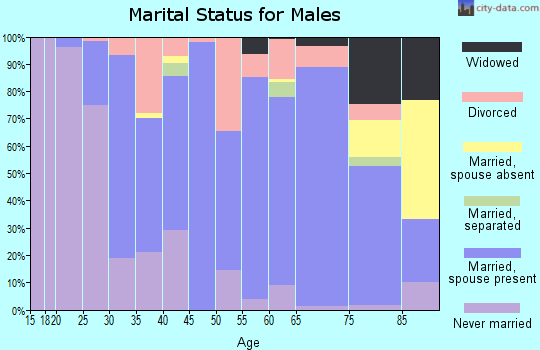 Zip code 29666 marital status for males