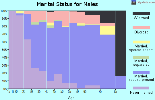 Zip code 29673 marital status for males