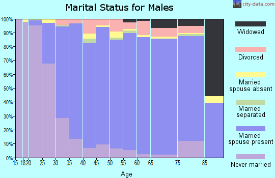 Zip code 29681 marital status for males