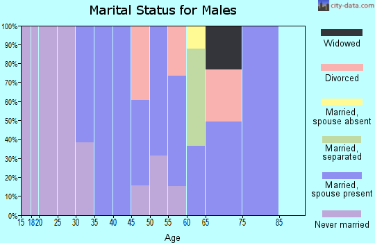 Zip code 29712 marital status for males