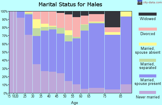 Zip code 29720 marital status for males