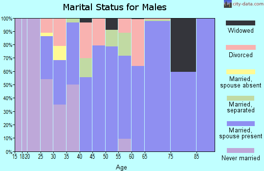 Zip code 29742 marital status for males