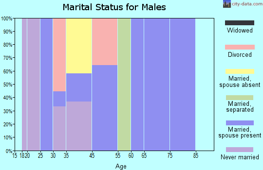 Zip code 29822 marital status for males