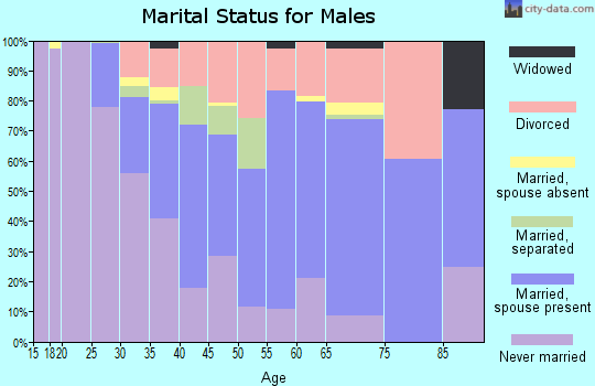 Zip code 30038 marital status for males