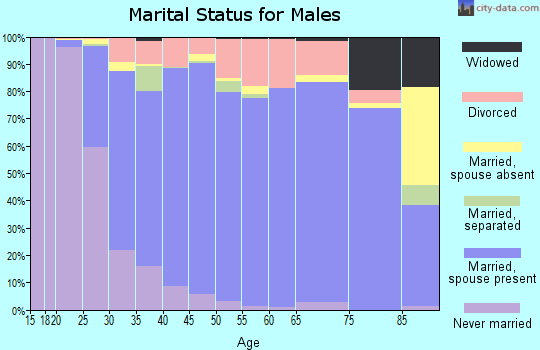 Zip code 30040 marital status for males