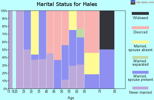 Zip code 30072 marital status for males