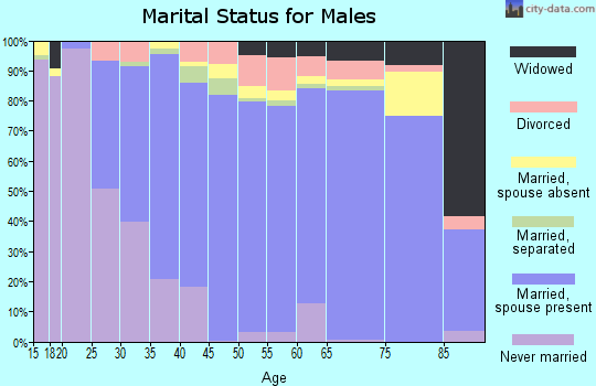 Zip code 30078 marital status for males