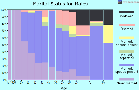 Zip code 30082 marital status for males