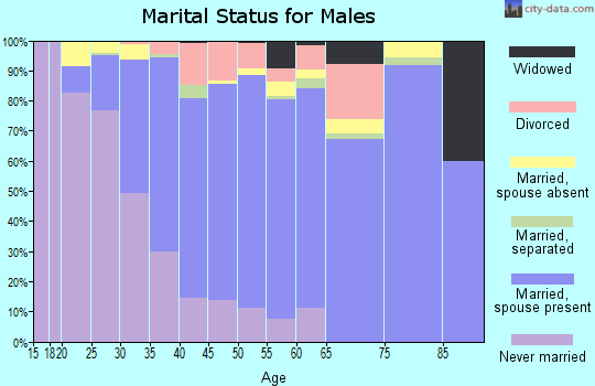 Zip code 30092 marital status for males