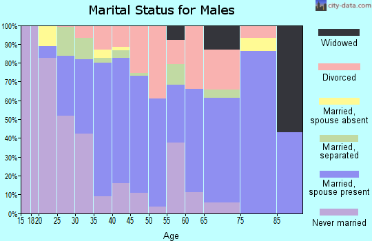 Zip code 30204 marital status for males