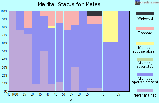 Zip code 30256 marital status for males