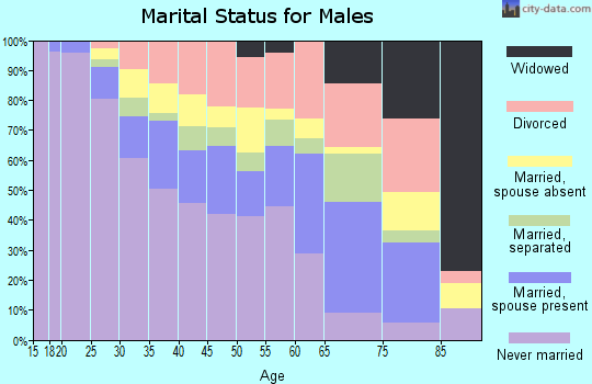 Zip code 30315 marital status for males