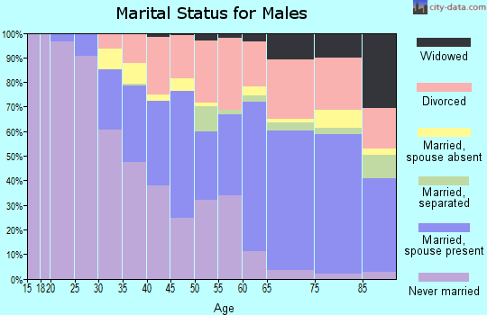 Zip code 30331 marital status for males