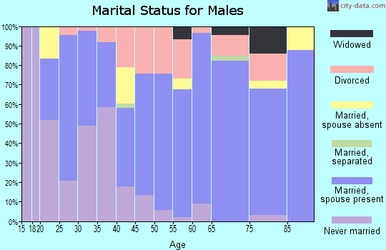 Zip code 30553 marital status for males