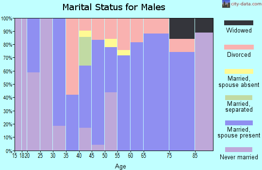 Zip code 30576 marital status for males