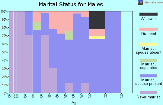 Zip code 31019 marital status for males