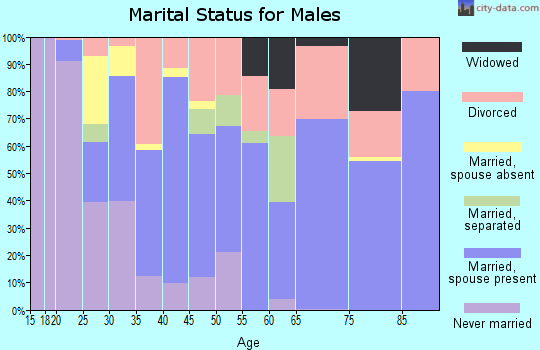 Zip code 31031 marital status for males