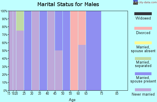 Zip code 31051 marital status for males