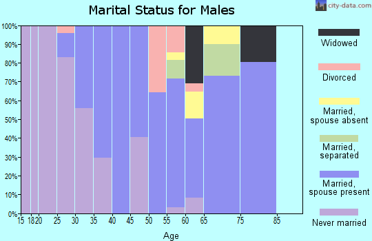 Zip code 31057 marital status for males