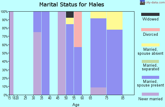 Zip code 31067 marital status for males